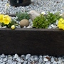 New alpine trough...