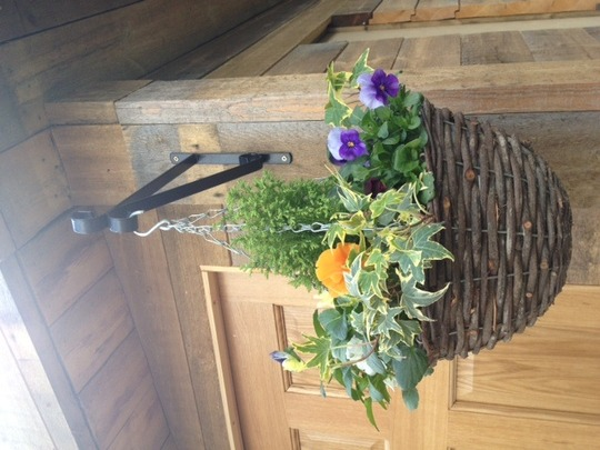 Summerhouse hanging basket
