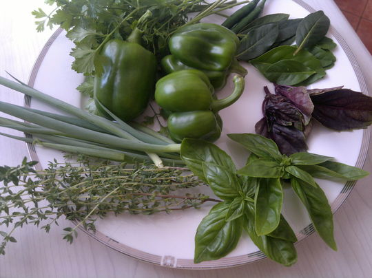 Herbs - thyme, italian parsley, spring onions, bay leaves, lemon leaves and green and purple basil.