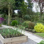 Garden Mid May 2013 005