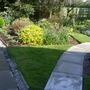 Garden Mid May 2013 001