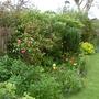 Garden Mid May 2013 017