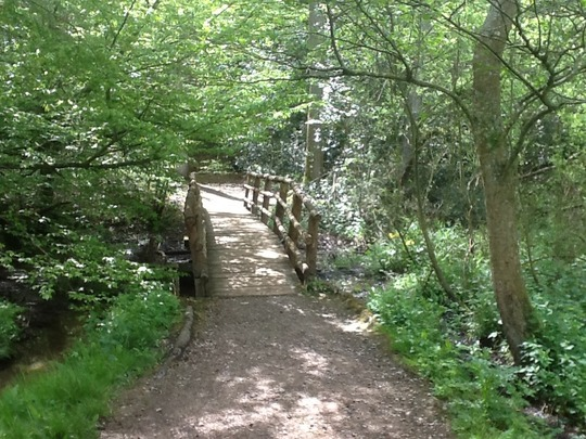 Sheffield Park.....Glorious