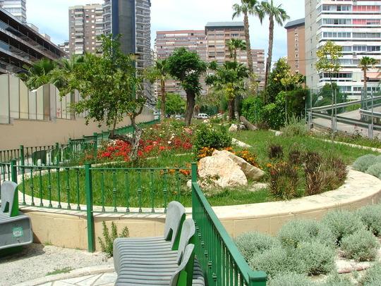 another garden area