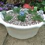 Planted Hand Basin