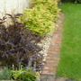 Front_garden_may_29013_004
