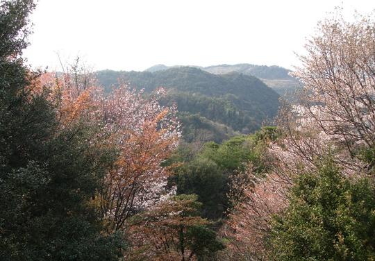 Osaka hills, Japan