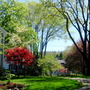 Spring in Farmington CT