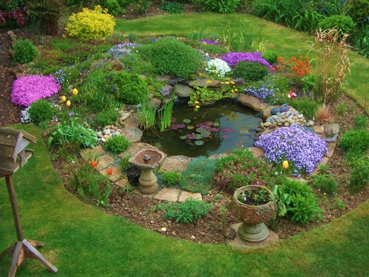Pond ideas around the pond for Landscaping around a small pond