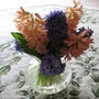 Orange and Blue Hyacinth (Hyacinthus)