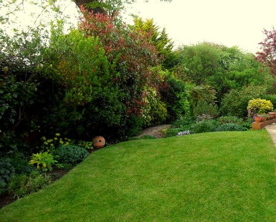 The Side garden 19.05.13
