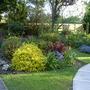 Garden Mid May 2013 025