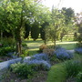 Garden Mid May 2013 026