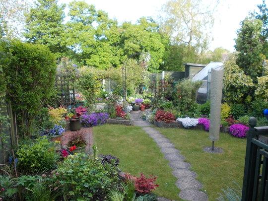 My Garden 23.5.13