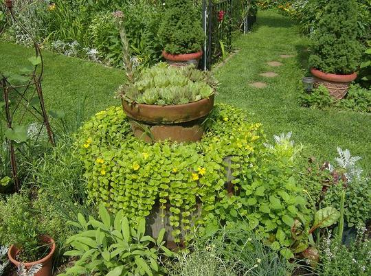 Herb Garden Tub