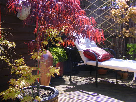 Acers dont let you down..
