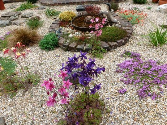 Part of Gravel garden