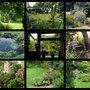 G_875_own_garden_montage_
