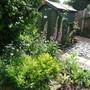 gardenendjune13 009