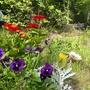 Little stockpile of annuals