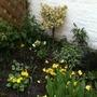 Early spring scene