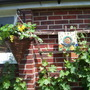 Hanging basket and my Snail Mosaic
