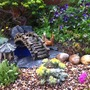miniature gravel garden