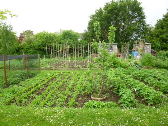 Over the garden gate!