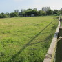 This is a photo of a field next to our allotments,