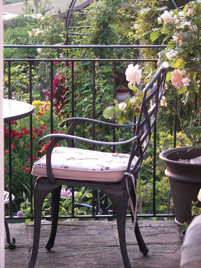 Sunday morning breakfast with the birds and flowers..