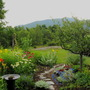 Front Garden July