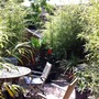 a view into the back garden