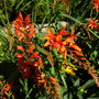August_2013_004