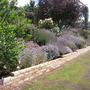 New brick wall for herb bank - at last!