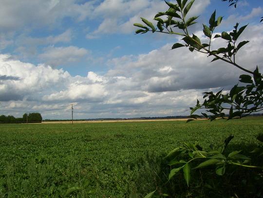 Norfolk skies and farmland