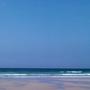 Pup on Gwenver beach