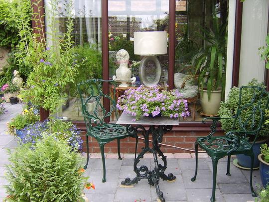 ziggy's garden