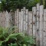 Klahanie's wall garden???