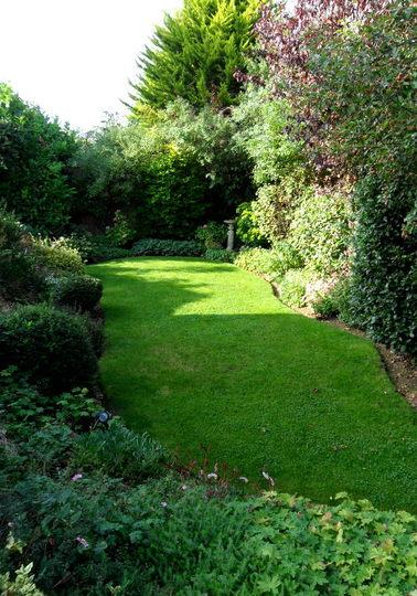 The bottom garden September 2013