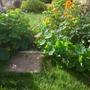 October garden colour