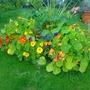 centre flower bed