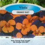 Viola Orange Duet bought 09-10-2013 001