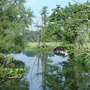 River Stour at Dedham