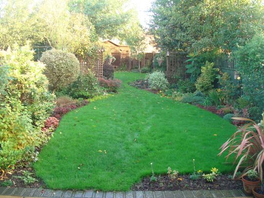 My Garden October 2013