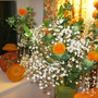 Flowers_on_halloween_003