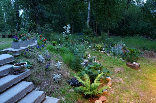 Midsummer Garden at Night