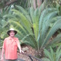 Large Dioon spinulosum and me at the San Diego Zoo (Dioon spinulosum)