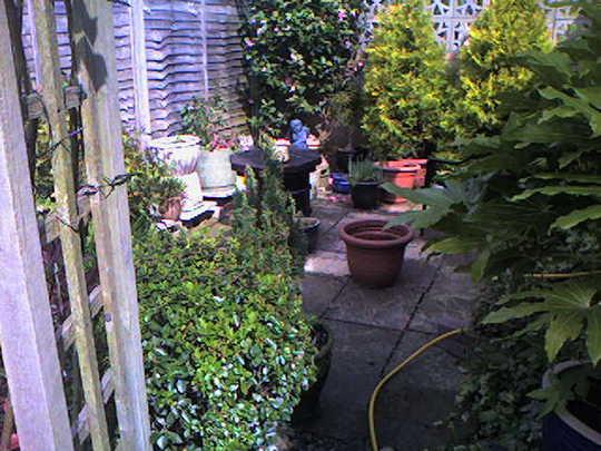 view at bottom of garden 2007