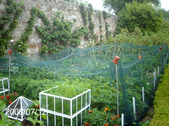 Fruit and veg at Kellie Castle