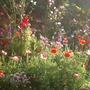 Janes_birthday_summer_garden_016